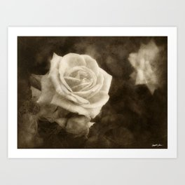 Pink Roses in Anzures 1 Antiqued Art Print