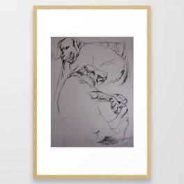 Sleeping Labs Framed Art Print