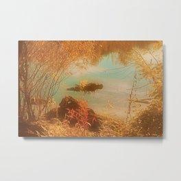 Warm Autumn Moments Metal Print