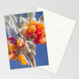 Mornington Grevillea Stationery Cards