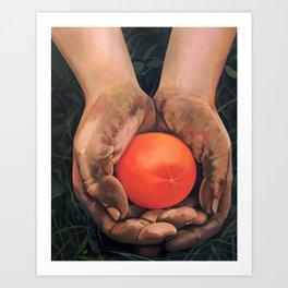 Hands holding a tomato Kunstdrucke
