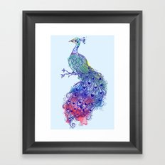 Calm Blue Peacock Framed Art Print