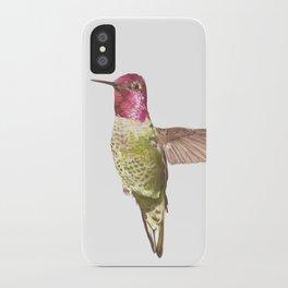 Calypte iPhone Case