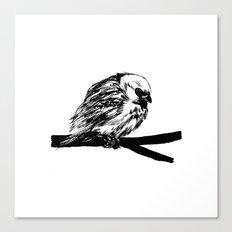 Bird Lover 2 Canvas Print