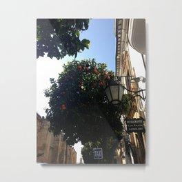 Typical Street In Cordoba Metal Print