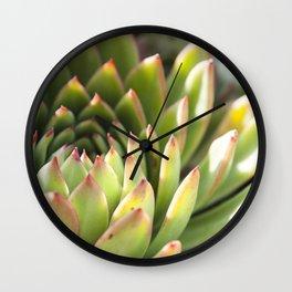 Echeveria 3  //  The Succulent & Cactus Series Wall Clock