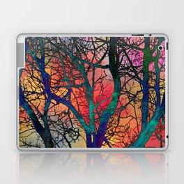Dreamy Sunset Laptop & iPad Skin