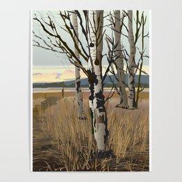 Conboy Lake Poster
