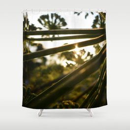 Poison Hemlock 3 Shower Curtain