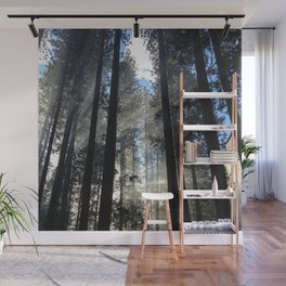 Sunlight Shines Through the Trees Wall Mural