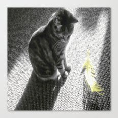 Little cat and Feather Canvas Print