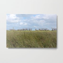 A grass land Metal Print