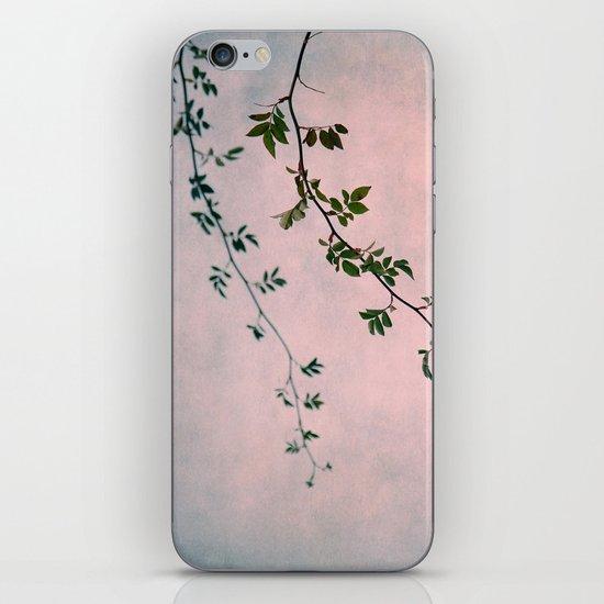 decembro iPhone & iPod Skin