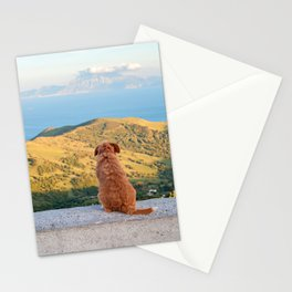 Lonely dog watching on Gibraltar Stationery Cards