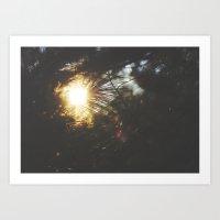 Sun Through the Pines Art Print