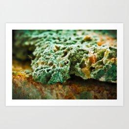 upper crust II Art Print