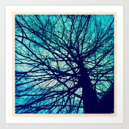 Branches reaching out Art Print