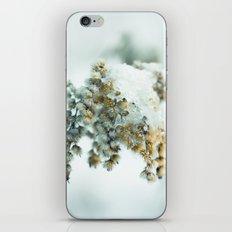 Frost & beauty iPhone & iPod Skin