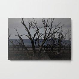 Drought Metal Print