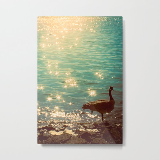 Showering in Sparkling Sunshine Metal Print