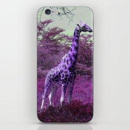 Wild Giraffe in Pink iPhone Skin