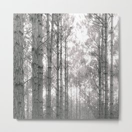 Through the Forest Sweetly Metal Print