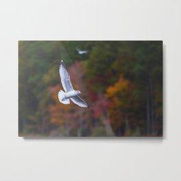 Autumn Flight Metal Print