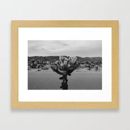 Cholla Cactus Garden XVII Framed Art Print