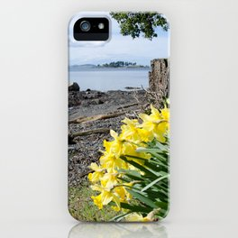 DAFFODILS OF SPRING IN THE SAN JUAN ISLANDS iPhone Case