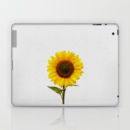 Sunflower Still Life Laptop & iPad Skin