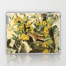 Northern mockingbird Laptop & iPad Skin