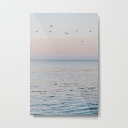 summer sunset v Metal Print