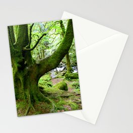 Torc Tree Stationery Cards