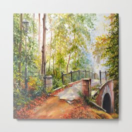 Bridge in the autumn park Metal Print