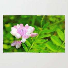 Light Pink Rug