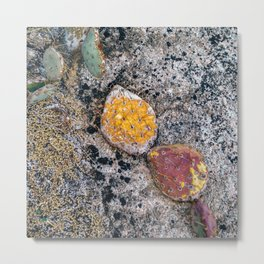 Cactus Abstraction Metal Print
