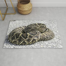 Snake spotted near Launch Pad 39B at NASAs Kennedy Space Center Rug