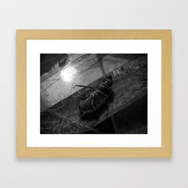 catkill Framed Art Print