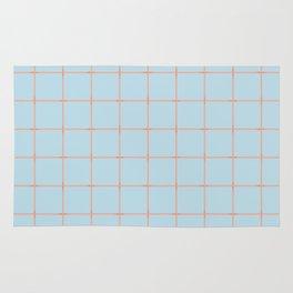 light blue open weave Rug