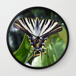 Swallowtail Buttterfly Resting on Oleander Leaves Wall Clock