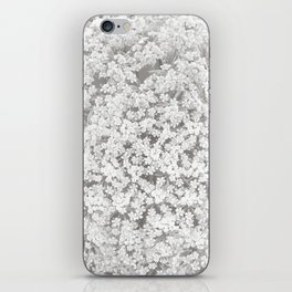 Queen Anne's Lace Flower in Soft Sepia Tones iPhone Skin