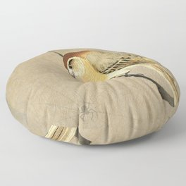 Shrike and spider - Vintage Japanese Woodblock Print Floor Pillow