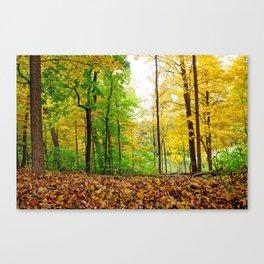 Mid Autumn Canvas Print