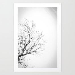 Lonely Tree 2 Art Print