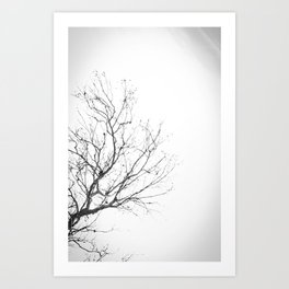 Lonely Tree 2 Art Print