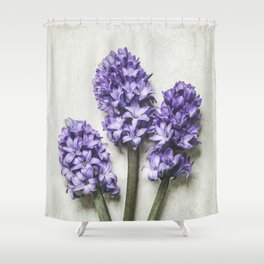 Three Lilac Hyacinth Shower Curtain
