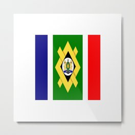 flag of Johannesburg Metal Print