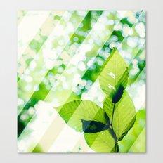 Leaves / Diagonal Stripes Canvas Print