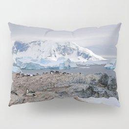 Gentoo Penguins Pillow Sham