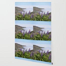 Catalina Lupines Wallpaper